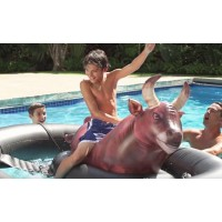 Giant Inflatable Bull Riding Pool Toy