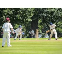 Cricket match party with full Cricket set & Bowling machine